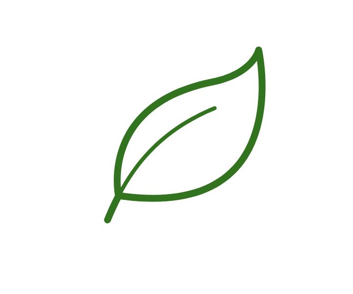 bio eko 1